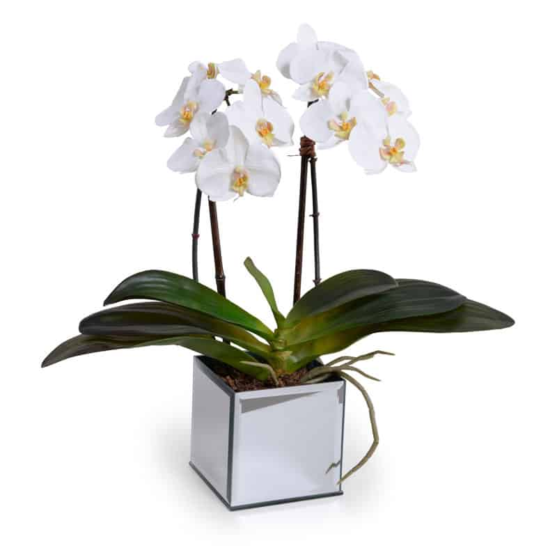 Pretty artificial plant by new growth designs